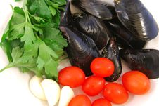 Free Cook A Pot Of Mussels Stock Photo - 15038400