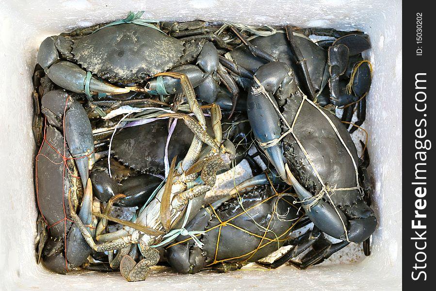 Box of Crabs at Market