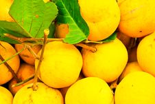 Free Thai Fruits Stock Images - 15040384