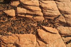 Sandstone Rock And Pebble Background Royalty Free Stock Photography
