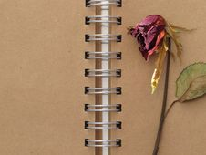 Dead Rose And Notebook