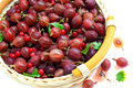Free Red Gooseberry And A Red Currant Royalty Free Stock Photos - 15051288