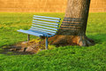 Free Inviting Bench Under An Old Tree Royalty Free Stock Photo - 15056175