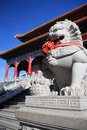 Free Lion Statue In Mahayana Temple Buddhist Stock Photo - 15057060
