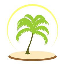 Free Palm Tree Stock Photo - 15050190
