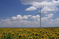 Free Green Energy - Wind Turbine Stock Photo - 15051350