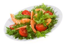 Free Salad Stock Photo - 15051380
