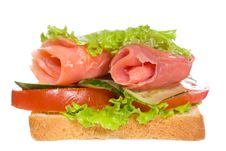 Free Sandwich With Smoked Salmon And Vegetables Stock Images - 15051734