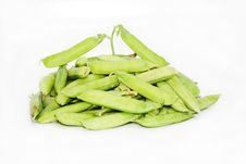 Free Pods Of Green Pea Royalty Free Stock Photography - 15051957