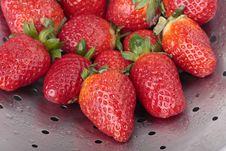 Free Fresh Strawberries Stock Image - 15052421