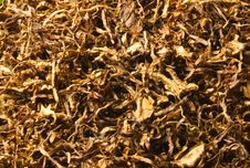 Free Tobacco Pattern Royalty Free Stock Images - 15052739