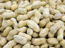 Free Peanuts Royalty Free Stock Photos - 15053858