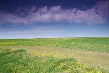 Free Spring Field Stock Photography - 15053862