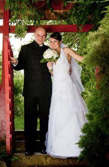 Free Bride And Groom Stock Photo - 15054050