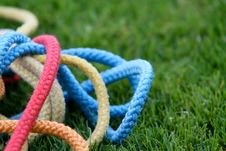 Free Gymnastic Ropes In Grass Royalty Free Stock Photos - 15058528