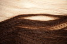 Free Hair Extension Royalty Free Stock Photo - 15059605
