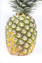 Free Ripe Pineapple Isolated Stock Images - 15066024
