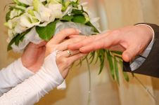 Free Wedding Ring Stock Image - 15060591