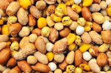 Free Sort Of Nuts Royalty Free Stock Photo - 15062325