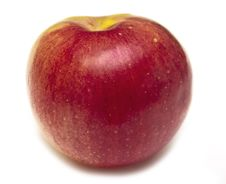 Free Red Apple Stock Photography - 15063162