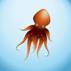 Free OctopusSea Stock Photos - 15065853