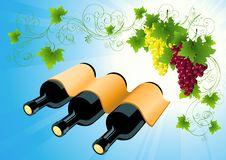 Free Wine Bottle Background Stock Images - 15065864