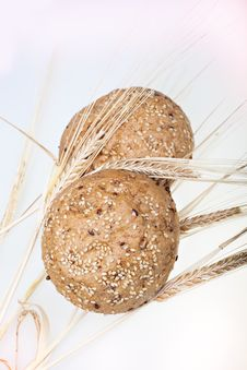 Free Whole Wheat Bread Royalty Free Stock Photography - 15066157