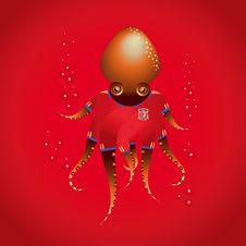 OctopusSpain Royalty Free Stock Photos