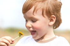 Happy Boy Enjoy With Yellow Dandelion Royalty Free Stock Photo