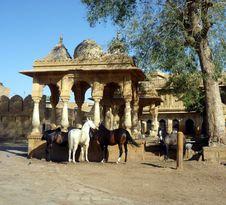 Royal Horses In Jaisalmer, India Royalty Free Stock Photos