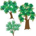 Free Three Green Leafy Trees Royalty Free Stock Image - 15070036