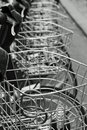 Free Bicycle Baskets Stock Photography - 15074292