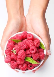 Free Crockery With Raspberries In Woman Hands. Stock Photography - 15072722
