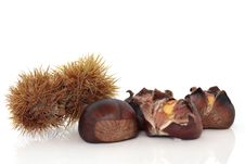 Free Chestnuts Royalty Free Stock Photography - 15074057