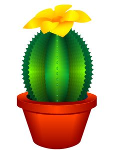 Free Indoor Plant A Cactus Royalty Free Stock Images - 15074459