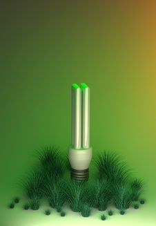Free Environment Friendly Light Bulb Stock Photography - 15074612