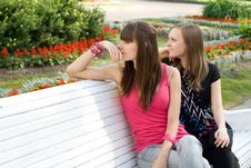 Free Two Female Friends Stock Photography - 15074692