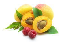 Apricots And Raspberry Stock Photography