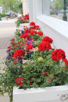 Free Window Shop Flower Boxes Stock Photos - 15075713