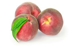 Free Three Peaches Isolated On White Royalty Free Stock Photography - 15079207