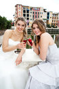 Free Young Women In Gowns Sharing A Drink Royalty Free Stock Images - 15082679