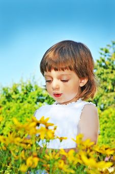 Free Pretty Little Girl  In The Garden Royalty Free Stock Photos - 15080488