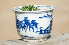 Flowerpot Royalty Free Stock Images