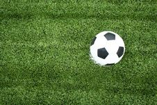 Free Soccer Ball On Green Grass Royalty Free Stock Images - 15081749