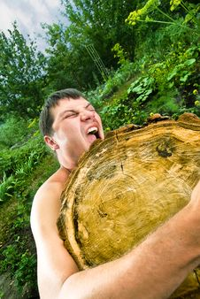 Young Man, Which Raises Huge Log Stock Photos