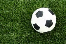 Free Soccer Ball On Green Grass Royalty Free Stock Photography - 15082457