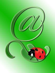 Free Ladybird On A Green Leaf Stock Photos - 15082503