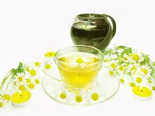 Free Herbal Tea With Daisy Medical Flowers Stock Image - 15082621