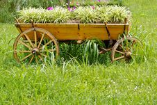Free Flower Carriage Stock Images - 15083004