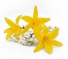 Free Bouquet From Yellow Lilies Royalty Free Stock Images - 15084149